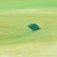 http://www.birenboimdan.com/Assets/Images/32/48/Small/329_divnha(2)_shmn_al_bd__60X80_2014.jpg